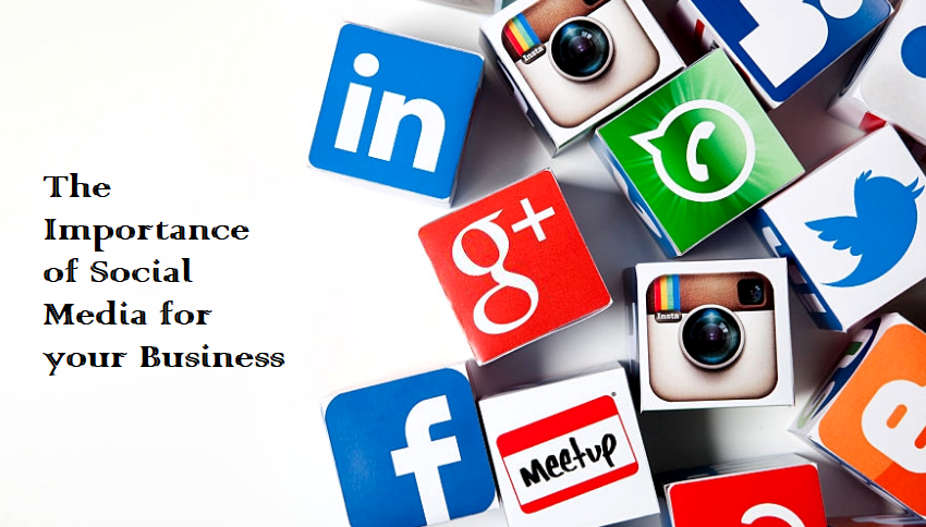 the importance of social media to your business